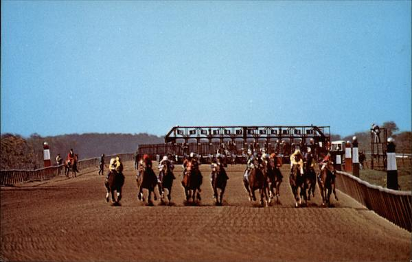 Coming Down the Back Straight Lexington Kentucky Mark L Bryant