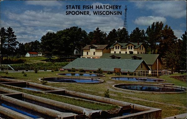 State fish hatchery spooner wi for Wisconsin fish farms