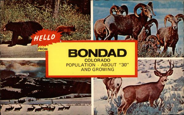 Hello from Bondad Colorado, Population About 30 and Growing