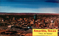 """Tall in Texas"" Postcard"