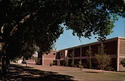 Library Building, Eastern New Mexico University Postcard