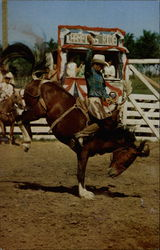 Champion Ride Rodeo