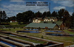 State Fish Hatchery