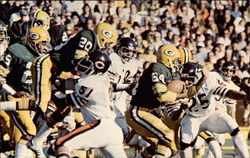 Packer-Bear Action: The Oldest Rivalry in Pro Football