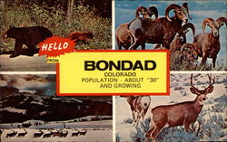 "Hello from Bondad Colorado, Population About ""30"" and Growing"