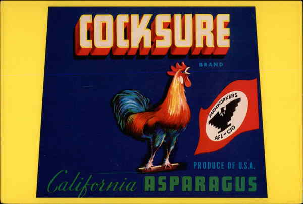 Cocksure brand California Asparagus, Produce of U.S. A