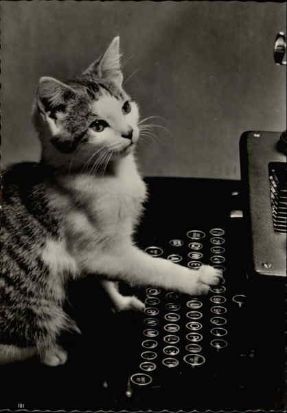 Cat at a Typewriter Cats