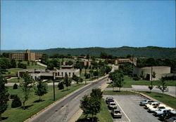 University of Steubenville Postcard