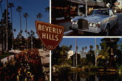 Scenes from Beverly Hills Postcard