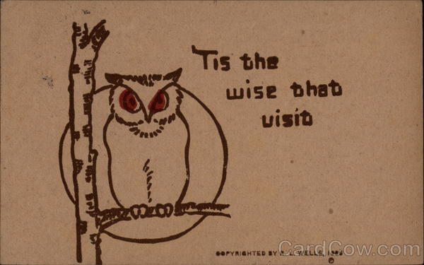 'Tis the Wise That Visit Owls