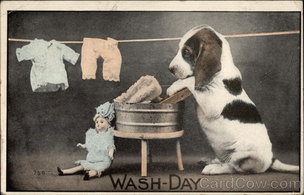 Wash-Day Dogs