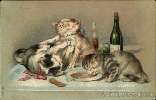 Three cats, with two playing and one sipping from a bowl