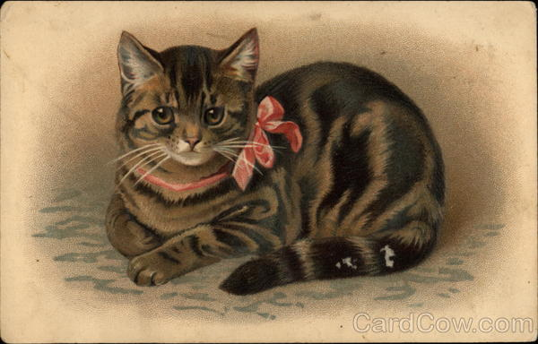 Kitten with a Red Bow Cats