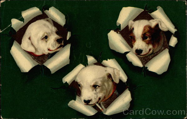 Puppies Poking Through Paper Dogs