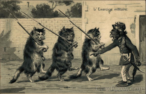 L'Exercice militaire Maurice Boulanger Cats Monkeys
