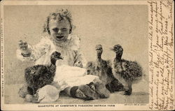 Toddler with baby ostriches photo