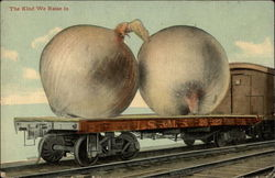 Huge onions on train's flat car