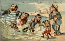 Monkey family wades in the ocean