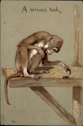 A monkey sits on a shelf and watches a bug or beetle