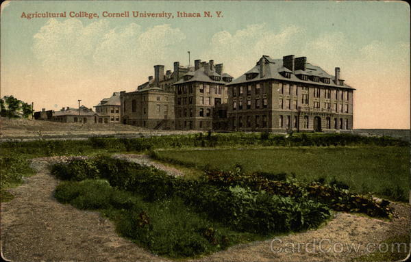 Agricultural College, Cornell University Ithaca New York