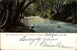 San Fransisquito Creek, near Stanford University