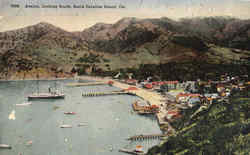 Avalon, Looking South Postcard