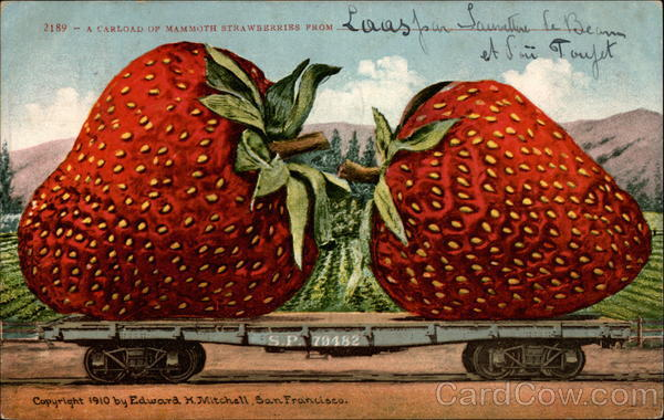 A carload of mammoth strawberries Exaggeration