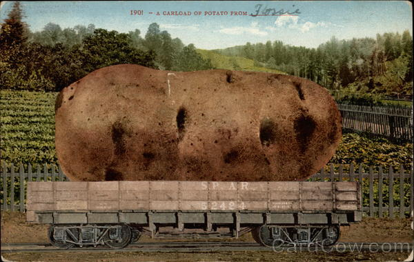 A Carload of Potato from ____________ Exaggeration