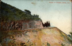 Staging at Catalina Island, Cal Postcard