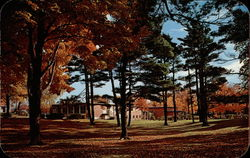 The Music Hall as seen through the Pine Grove - Hope College