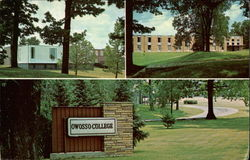 Owosso College