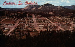 Aerial View of Black Hills town