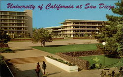 University of California Postcard