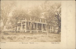 Willow View Postcard