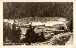 Wrangell Institute for Natives