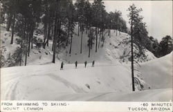 From Swimming to Skiing-Mount Lemmon