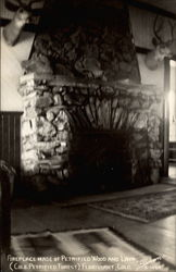 Fireplace made of Petrified Wood and Lava