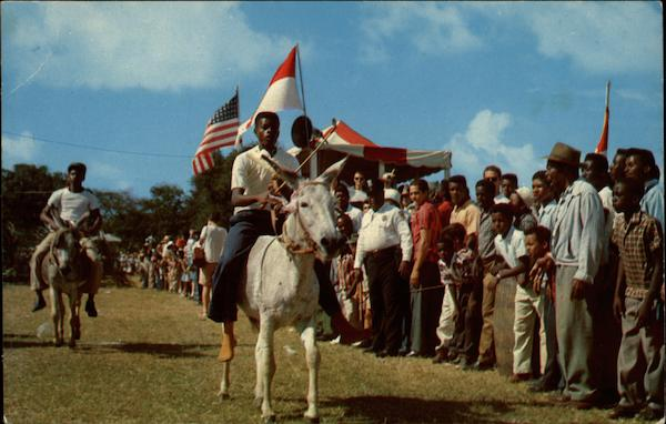 Annual Donkey Races St. Croix Virgin Islands Caribbean Islands
