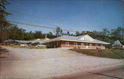 Bluenose Motel Postcard