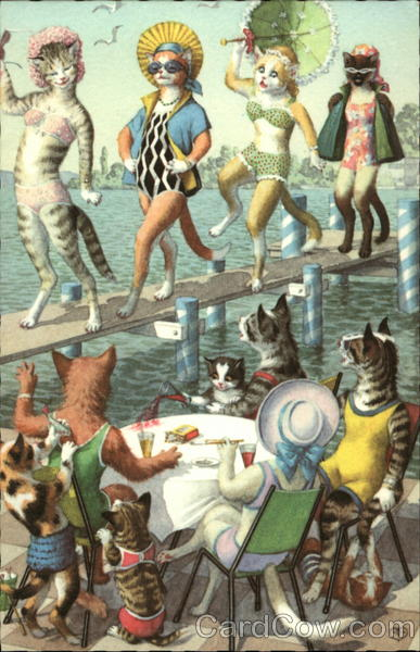 Cats as bathing beauties