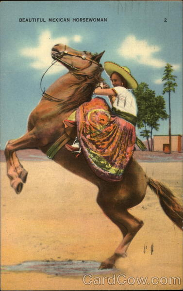 Beautiful Mexian horsewoman Cowboy Western