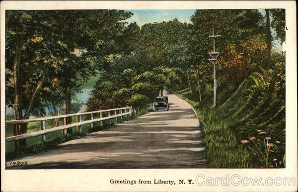 View of tree lined road Liberty New York