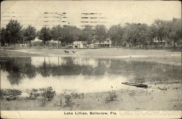Lake Lillian Belleview Florida