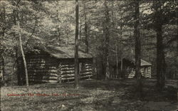 Cabins at The Shades