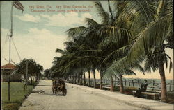 Key West Barracks, the Coconut Drive Along Parade Grounds