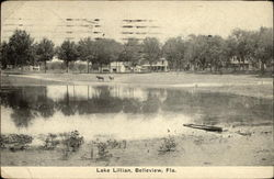 Lake Lillian