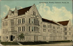 Gymnasium, Bradley Institute