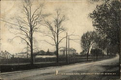 N.Y. Agricultural Experiment Station