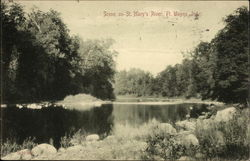 Scene on St. Mary's River