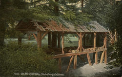 Old Mill at Mill Valley